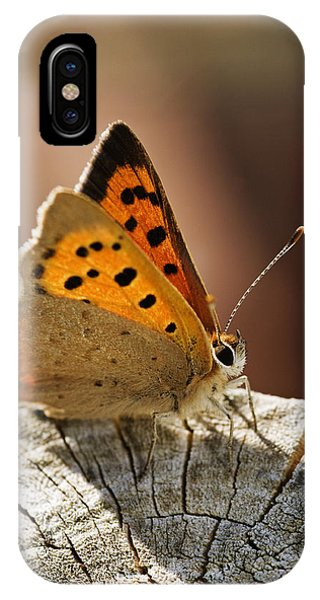 Small Copper Butterfly IPhone Case