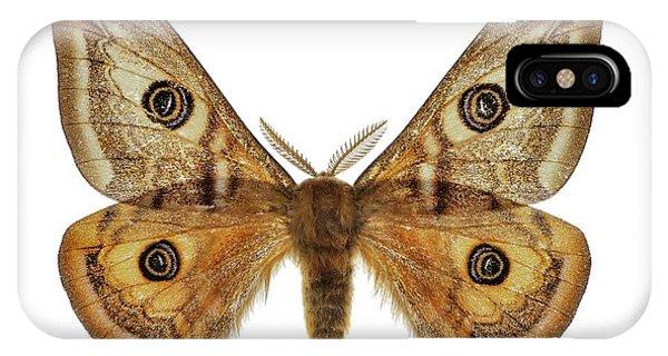 Small Emperor Moth IPhone Case