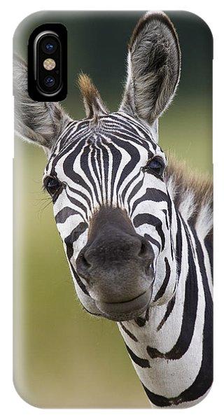 Mp iPhone Case - Smiling Burchells Zebra by Suzi Eszterhas