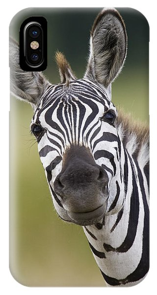IPhone Case featuring the photograph Smiling Burchells Zebra by Suzi Eszterhas