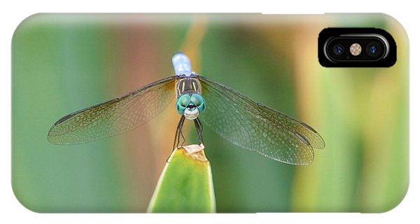 Smiling Dragonfly IPhone Case