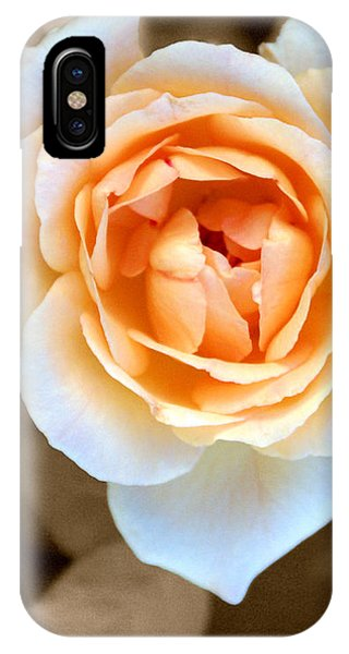 iPhone Case - Smooth Angel Rose by Holly Kempe