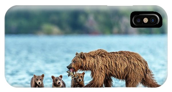 Brown Bear iPhone Case - Snack by Giuseppe D\\\'amico
