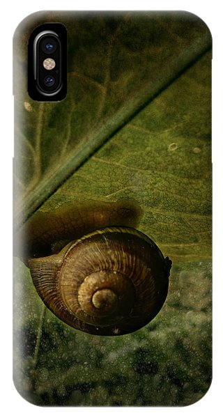 Snail Camp IPhone Case