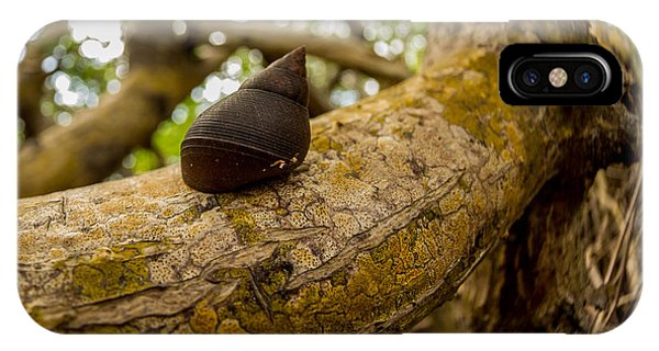 Snail Phone Case by Carl Engman