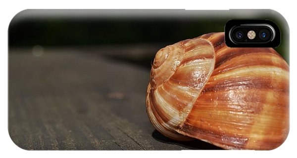 Snail Shell II IPhone Case