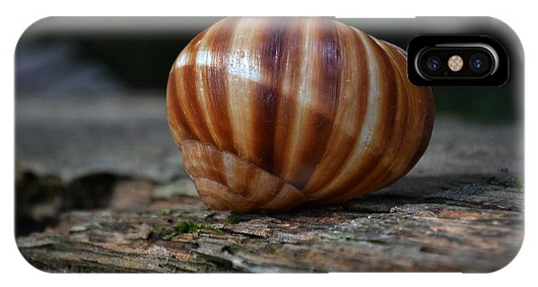Snail Shell IPhone Case