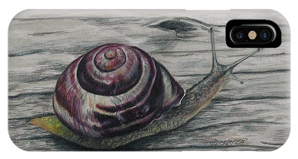 Snail Study IPhone Case