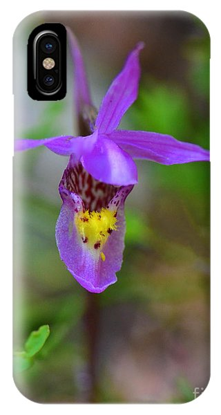 IPhone Case featuring the digital art Snapdragon by Mae Wertz