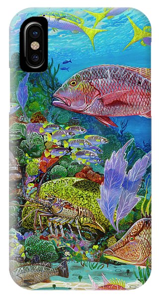 Reel iPhone Case - Snapper Reef Re0028 by Carey Chen