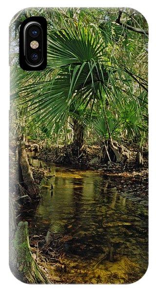 Snell Creek. Osceola County Florida IPhone Case