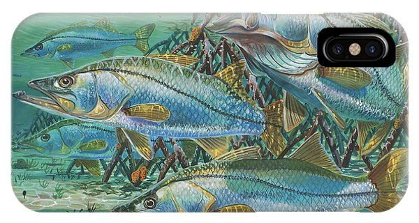 Bahamas iPhone Case - Snook Attack In0014 by Carey Chen