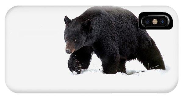 Snow Bear IPhone Case