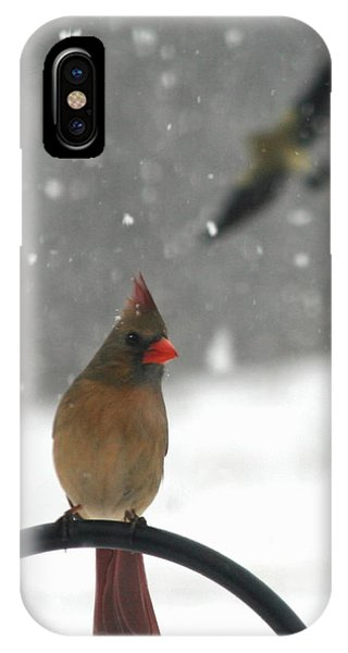 Snow Bird II IPhone Case