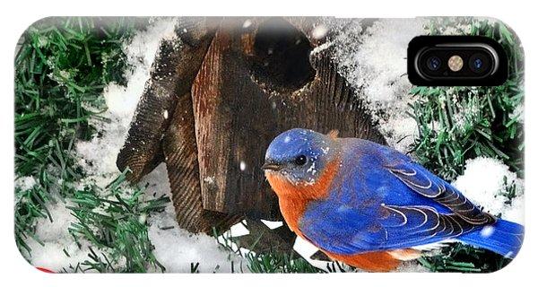 Snow Bluebird Christmas Card IPhone Case