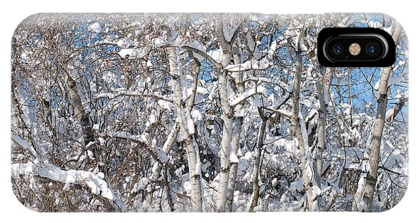 Snow Covered Birch Trees IPhone Case