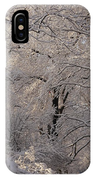 Snow Covered Trees On Central Park West IPhone Case