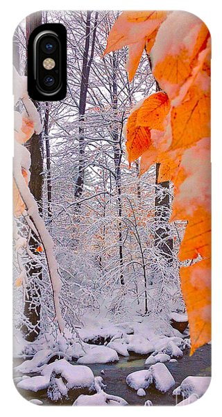 Snow Covered Woods And Stream IPhone Case