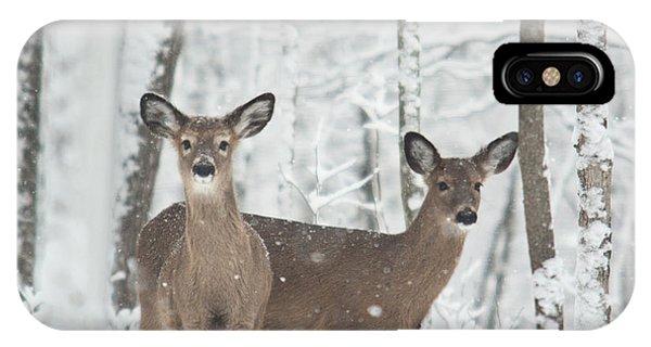 Crossville iPhone X Case - Snow Deer by Douglas Barnett