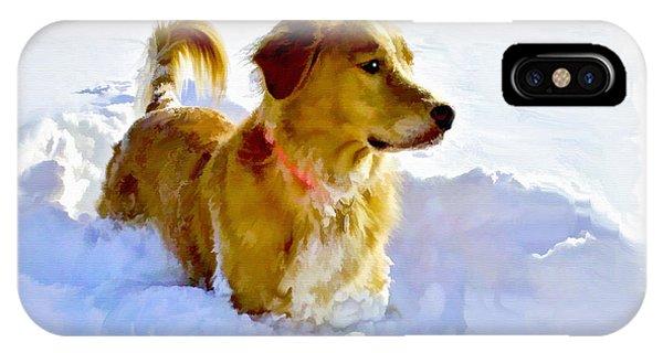 Snow Dog IPhone Case