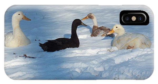 Snow Ducks IPhone Case
