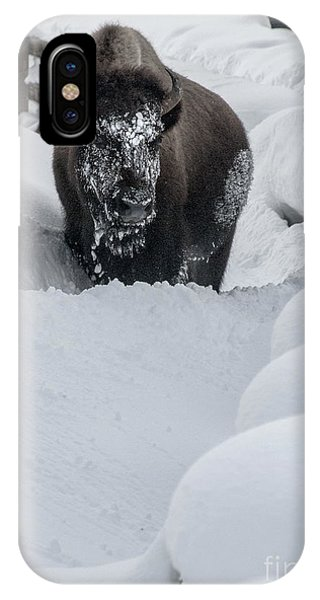 Snow Face IPhone Case