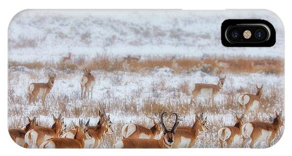 Ice iPhone X Case - Snow Grazers by Darren  White