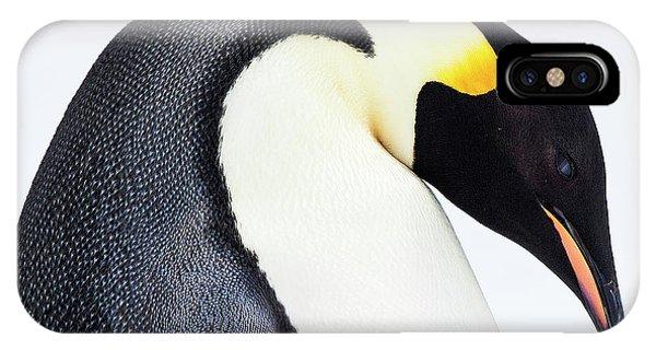 Snow Hill, Antarctica IPhone Case