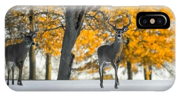 Snow In Autumn  IPhone Case