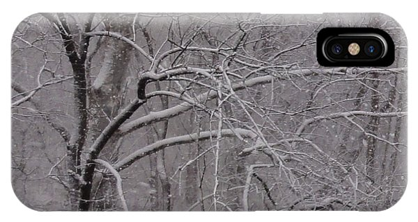 Snow In The Trees At Bulls Island IPhone Case