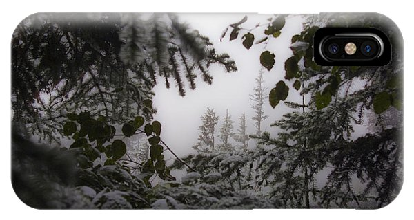Snow In Trees At Narada Falls IPhone Case