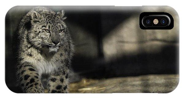 Snow Leopard iPhone Case - Snow Leopard 2 by Everet Regal