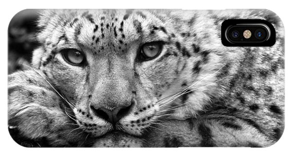 Snow Leopard iPhone Case - Snow Leopard In Black And White by Chris Boulton