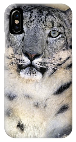 IPhone Case featuring the photograph Snow Leopard Portrait Endangered Species Wildlife Rescue by Dave Welling