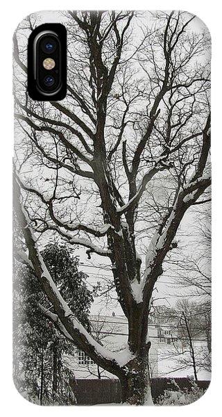 Snow Oak IPhone Case