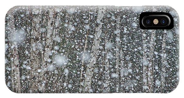 Snow On Birch  IPhone Case