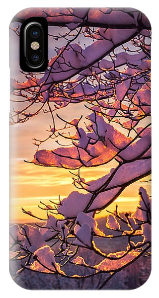 Snow On Branches IPhone Case