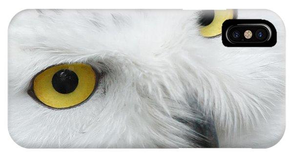 Snow Owl Eyes IPhone Case
