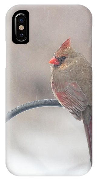 Snow Shower IPhone Case