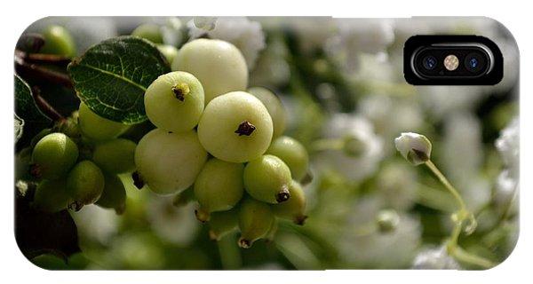 Snowberries IPhone Case