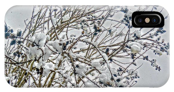 Snowcovered Bush IPhone Case