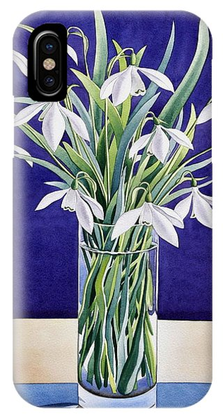 Elegant iPhone Case - Snowdrops  by Christopher Ryland