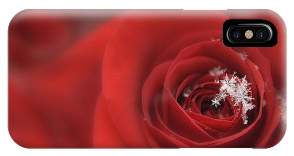 Snowflakes On A Rose IPhone Case