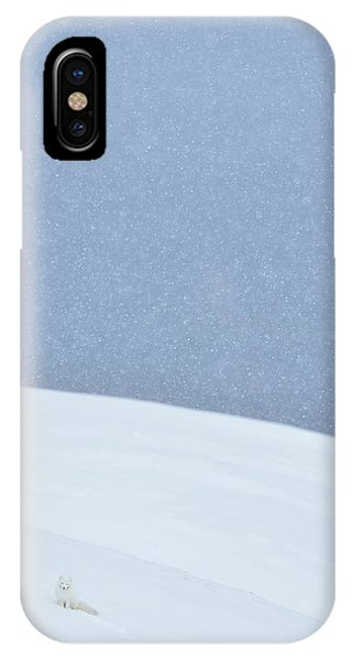 Soft iPhone Case - Snowy Arctic Fox In Svalbard by Yves Adams