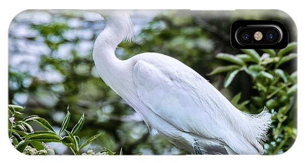 Snowy Egret In Trees IPhone Case