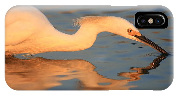 Snowy Egret Mirror IPhone Case