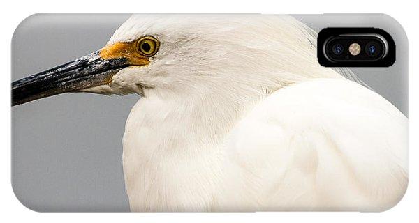 Snowy Egret Profile IPhone Case