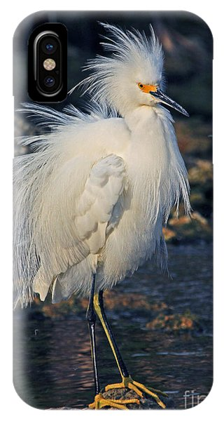 Snowy Egret Show Off IPhone Case