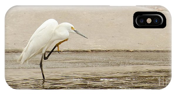 Lake Juliette iPhone Case - Snowy Egret Taking Advantage Of The Flood by Donna Brown