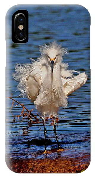 Snowy Egret With Yellow Feet IPhone Case